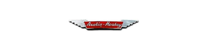 Ceinture de sécurité avant et arrière pour Austin Healey