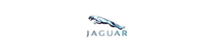 Ceinture de sécurité avant et arrière  Jaguar